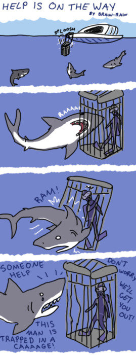 Funny Shark Cage Diving